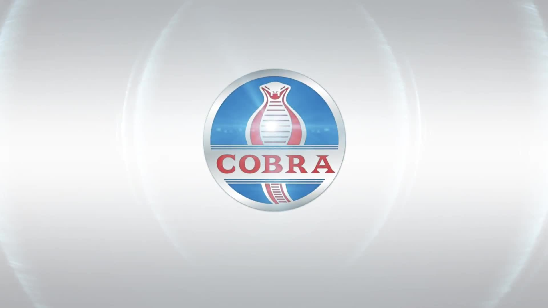 Cobra Softwares Video Promo